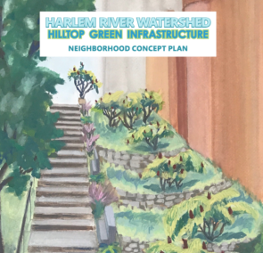 See our Harlem River Watershed Hilltop Green Infrastructure Concept Plan